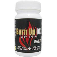 BURNUP-DX