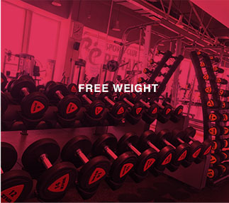 Free Weight